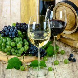 raisins et verres de vin